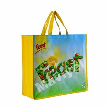 Shiny Lamination PP Non Woven Carrier Hand Bag