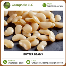 Butter Beans/ Price of White Kidney Beans at Affordable Price