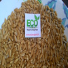 /product-detail/high-quality-wheat-grain-for-hot-sale-50016771924.html