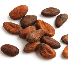 Organic Fermented Cacao Beans and Cacao powder