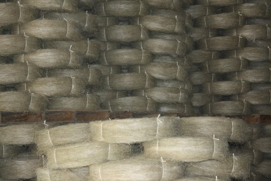 Kenya Sisal fiber for sisal fabric