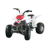 Mountain motor beach motor HL-A412