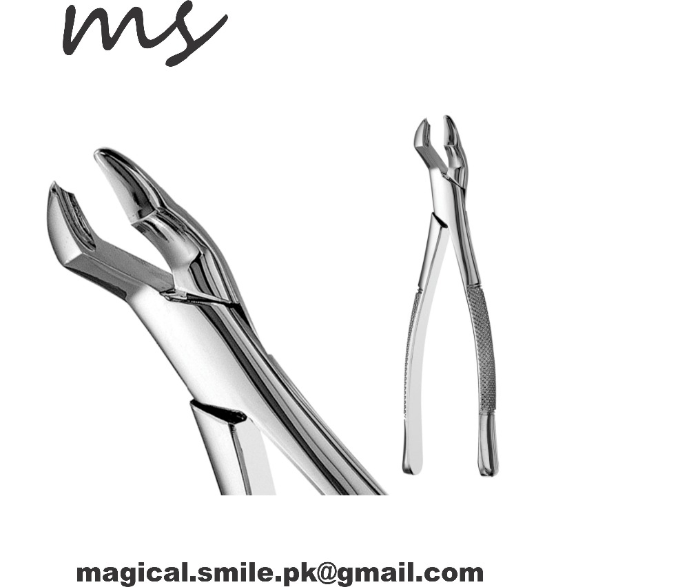 DENTAL INSTRUMENTS DENTAL EXTRACTING FORCEPS #53L AMERICAN PATTERN