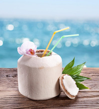 fresh coconut/bulk coconut water/fresh coconut price