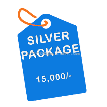 Silver Package :- Business Website Design with free domain & hosting