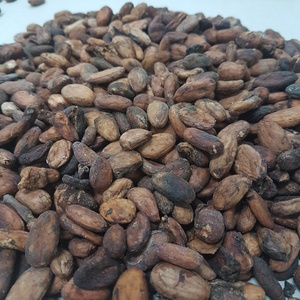 Cocoa Beans - Cacao Beans - Chocolate beans High Quality Indonesia