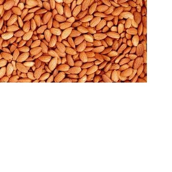 Raw Pine nuts,Brazilian nuts,and almond nuts for sale