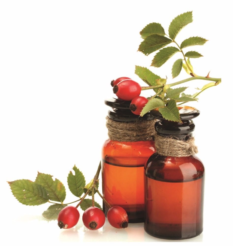 High Quality Pure Rosehip Seed Oil / Rose Hip Oil (OEM/ODM) - DYNETON