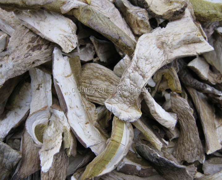 Dried Boletus Edulis Porcini Mushrooms