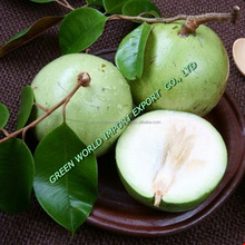 Star Apple with cheap price and high quality