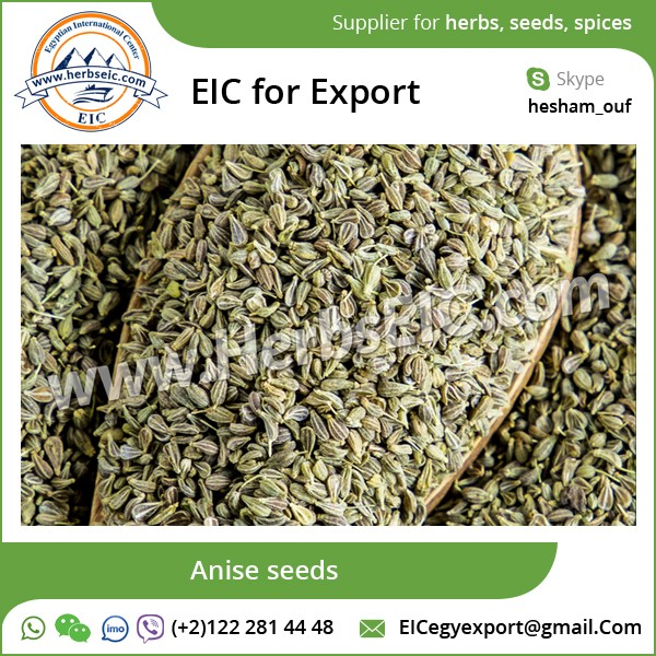 Anise/ Green Anise/ Star Anise Available for Export