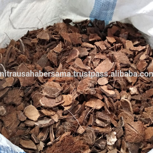 Coconut Shell For Charcoal