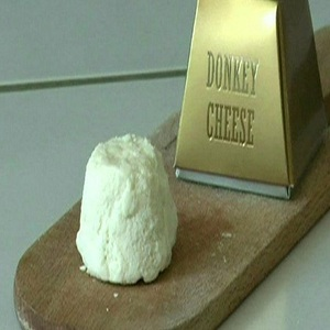 Donkey cheese