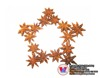 /product-detail/vietnam-star-anise-plant-five-star-seasoning-50038763827.html