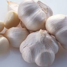 New crop fresh natural pure white garlic