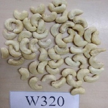Cashew Nuts W240 W320 W450/ Favourable Price of Cashew Nut in Africa