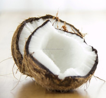 Fresh Brown Semi Husked Coconut for sale in Dubai