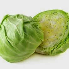 Fresh Cabbage from Vietnam with Good Price