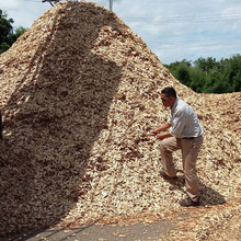 Rubber Wood Chips from Thailand