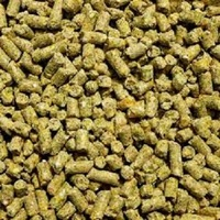 Corn Gluten Meal Chicken Feed for animals