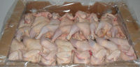 Grade A Halal Whole Frozen Chicken From Brazil