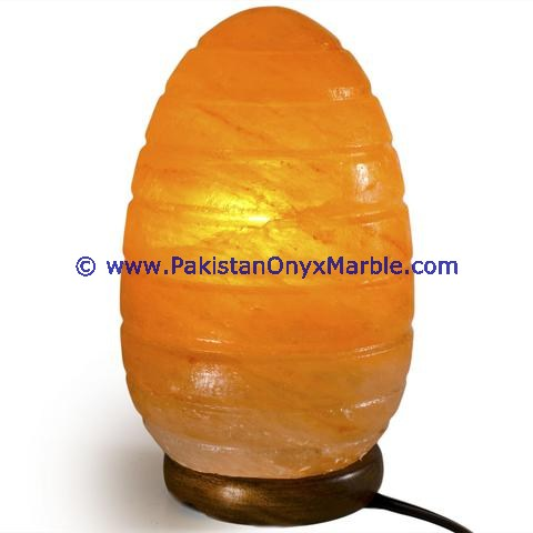 Glow Hand Carved Natural himalayan ionic salt crystal Egg lamp
