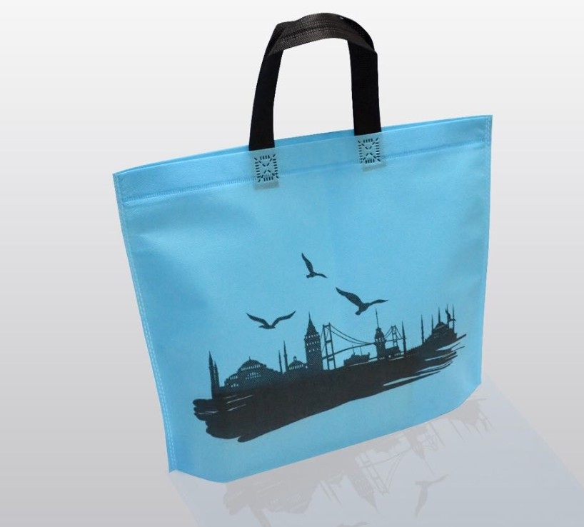 Non woven bag with handle