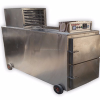 Stainless Steel 2 Body Mortuary Chamber