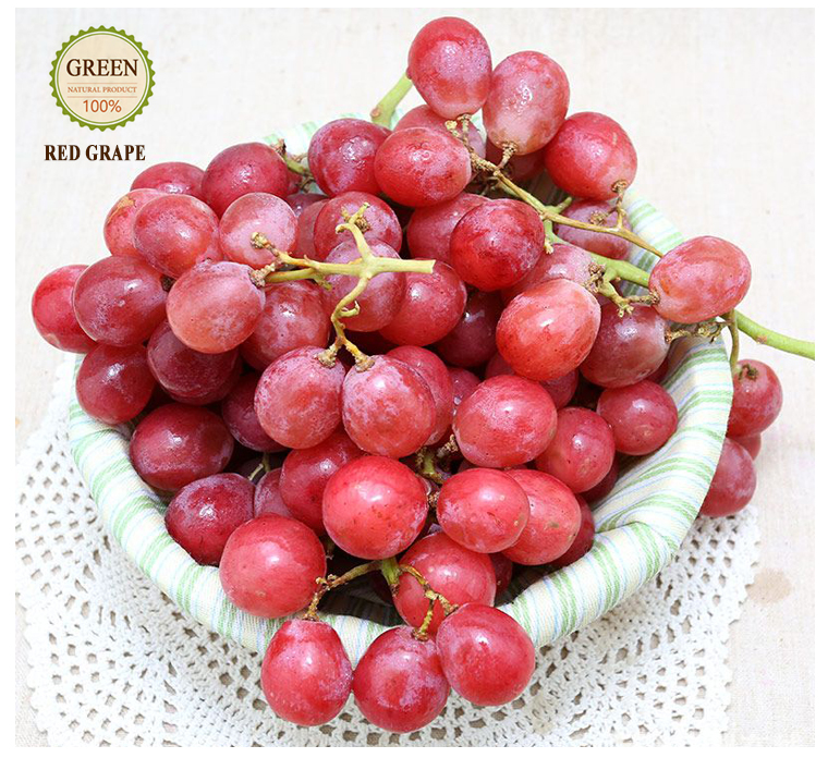 Hot New Product Organic Fresh Grape Fruit for sale