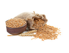 Fiber Rich Wheat Grains