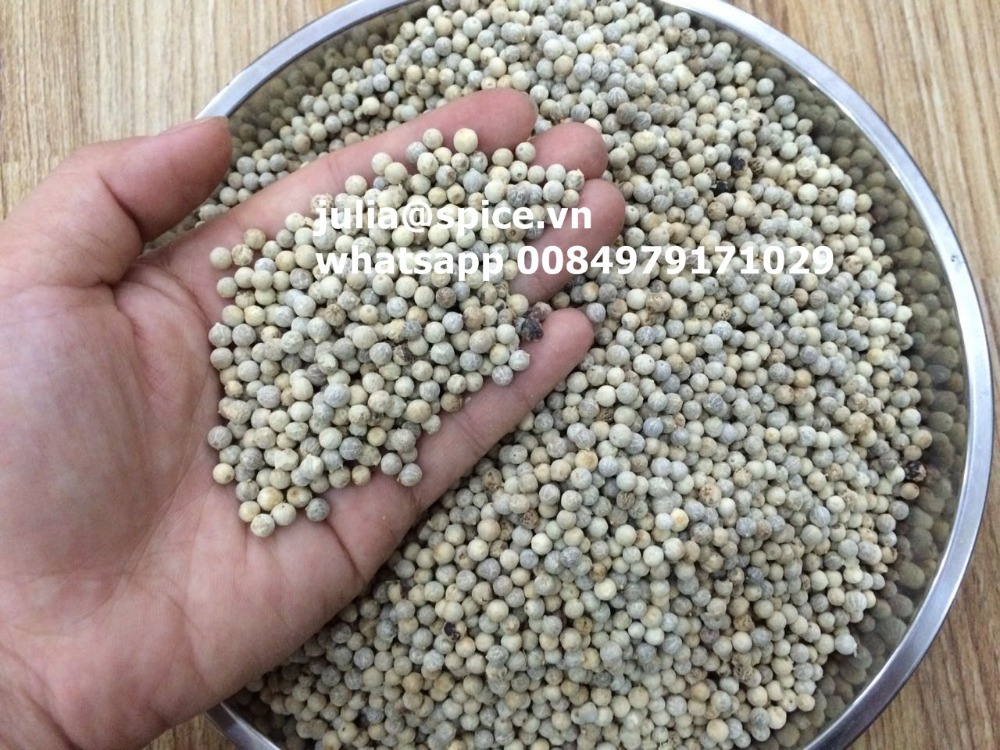 Premium quality- White pepper double washed cheap price - vietnam origin whatsapp 0084979171029
