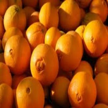 2018 Fresh oranges/Fresh mandarin orange available