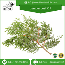 High Quality Reasonable Price Juniper Leaf Essential Oil