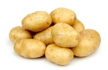 High quality indian iso certified potato for french fries