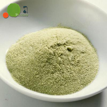 Japanese variety Matcha Sencha Kombucha powder for powder instant tea