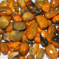 Natural Stone Tumbled Bumble Bee Jasper