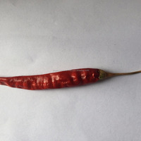 Teja Red Chilli With Cap