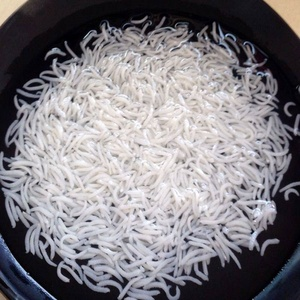 Indian long grain Basmati rice