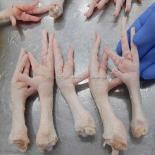 Grade A Certified HALAL Frozen Chicken Feet / Paws / Wings for Sale