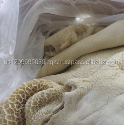 Halal Buffalo Boneless Meat/ Frozen Beef Omasum/ Frozen Beef for Sale at good prices