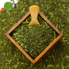 Healthy Japanese tea using fresh green tea leaves for hwolesale