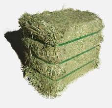 Alfafa Hay for Animal Feeding Alfalfa / Timothy Hay and Bermuda Hay for sale