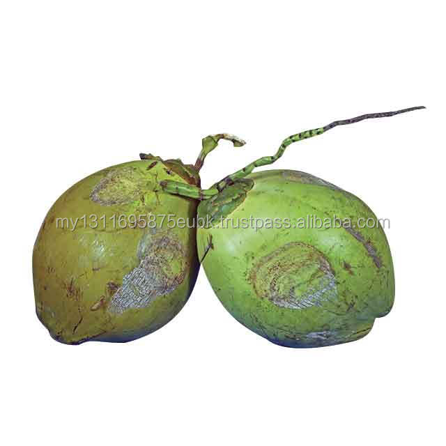 MATAG Fresh Green Coconut with Tender Flesh