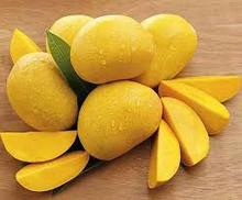 Fresh Mangoes for Export