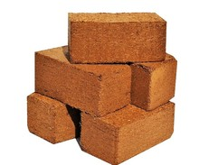 650 gram coconut coir bricks