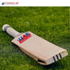 2018 Wholesale Cricket Bat