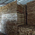 Acacia sawn timber - low price high quality( Size :1200/900 x 60/70 MM)