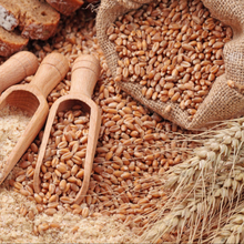 Wholesale Wheat Grain for Animal Feed Human Consumption
