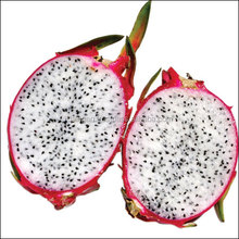 Factory supply dragon fruit price freeze dried fruit powder frozen pitaya