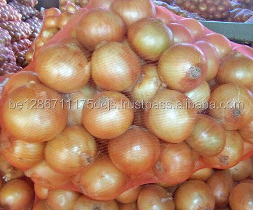 Wholesale bulk spring onion frozen fresh shallot onion